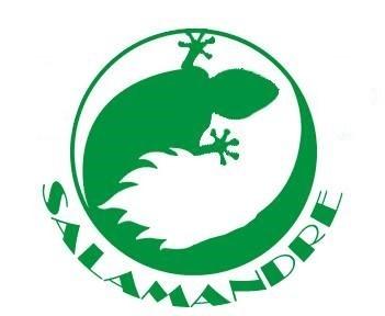 Avec le projet Salamandre ENGIE veut injecter du biométhane de synthèse dans le réseau 1